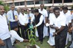 Hon'ble MoS(I/C) PNG Planted a tree on Chennai Petroleum Corporation campus on 23rd July'16